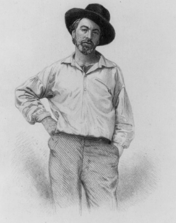 This is age Walt at 35, and was the front piece to Leaves of Grass, Fulton St., Brooklyn, N.Y., 1855, steel engraving by Samuel Hollyer
